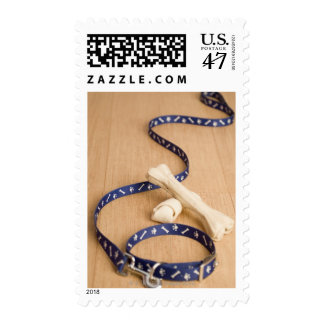 Close-up of a pet collar and a leash with dog postage