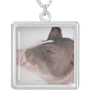Close-up of a piglet's head, smiling square pendant necklace