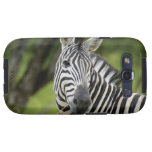 Close-up of a Plains zebra (Equus burchellii) in Samsung Galaxy S3 Covers