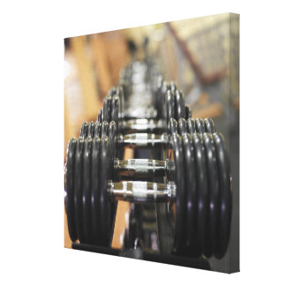 Close-up of a row of dumbbells canvas print