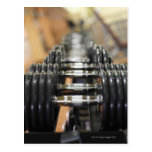 Close-up of a row of dumbbells post card