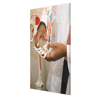 Close-up of a student doctor studying anatomy on canvas print