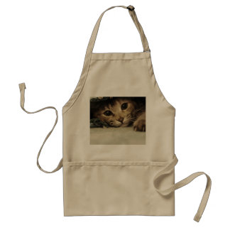 Close up of a tabby cats eyes adult apron