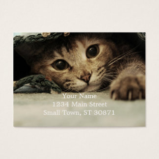 Close up of a tabby cats eyes business card