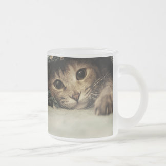 Close up of a tabby cats eyes frosted glass coffee mug