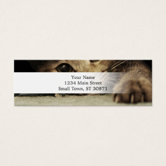 Close up of a tabby cats eyes mini business card
