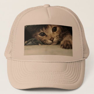 Close up of a tabby cats eyes trucker hat