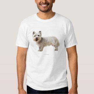Close up of a terrier tee shirt