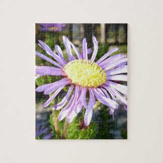 Close Up of A Violet Aster Flower Spring Bloom Jigsaw Puzzle