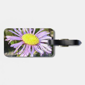 Close Up of A Violet Aster Flower Spring Bloom Luggage Tag