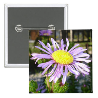 Close Up of A Violet Aster Flower Spring Bloom Pinback Button
