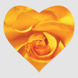Close Up of a Yellow Rose Heart Sticker