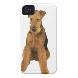 Case-Mate iPhone 4 Barely There Universal Case with Airedale Terrier Phone Cases design