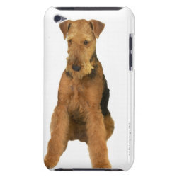 Case-Mate iPod Touch Barely There Case with Airedale Terrier Phone Cases design