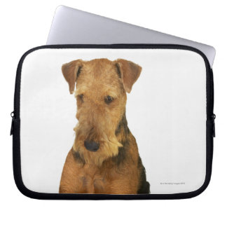 Close up of an airedale terrier laptop sleeve