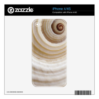 Close-up of an animal shell decals for the iPhone 4