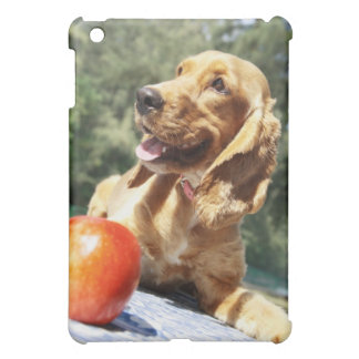 Close-up of an in front of a dog iPad mini covers