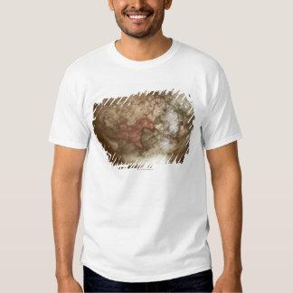 Close up of antique globe 2 T-Shirt