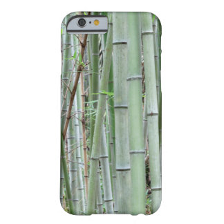 Close-up of bamboo grove barely there iPhone 6 case