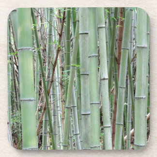 Close-up of bamboo grove beverage coaster