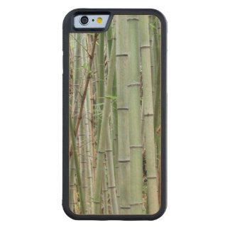 Close-up of bamboo grove carved maple iPhone 6 bumper case