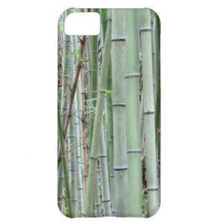 Close-up of bamboo grove case for iPhone 5C