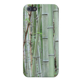 Close-up of bamboo grove case for iPhone SE/5/5s