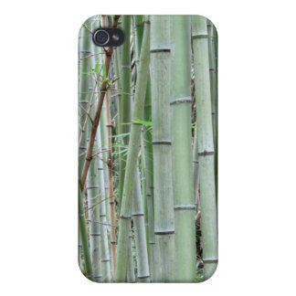 Close-up of bamboo grove iPhone 4 cases