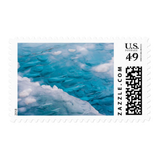 Close-up of blue ice postage