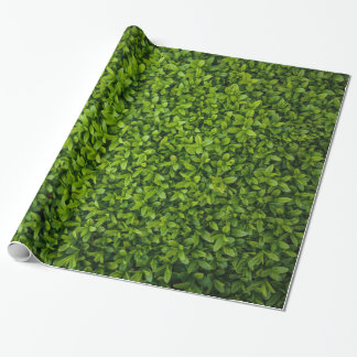 Close Up of Bright Green Hedge Wrapping Paper