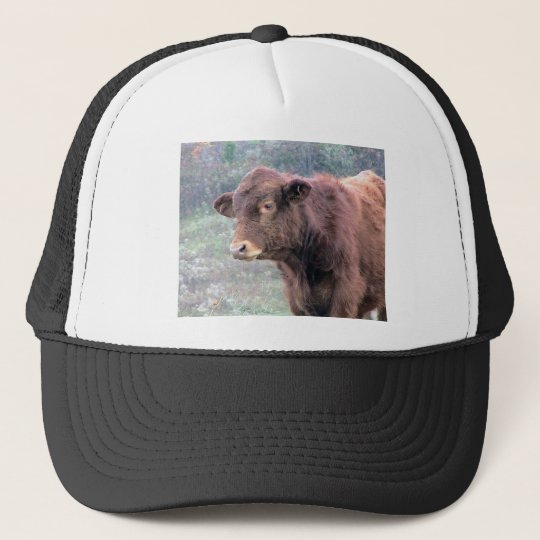 Close-Up Of Brown Hairy Cow In A Wide Meadow Trucker Hat