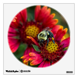 Close-up of bumblebee with pollen basket wall sticker