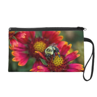 Close-up of bumblebee with pollen basket wristlet purse