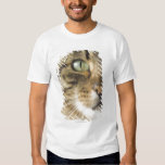 Close-up of cat (focus on eye) shirt