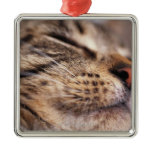 Close-up of cat whiskers and muzzle christmas tree ornament