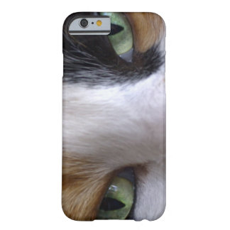 Close-up of cat's eyes barely there iPhone 6 case