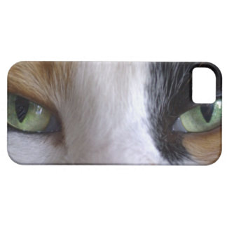 Close-up of cat's eyes iPhone SE/5/5s case
