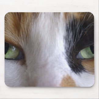Close-up of cat's eyes mouse pad