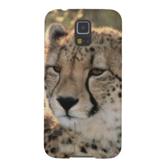 Close-up of Cheetahs Galaxy S5 Case