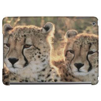 Close-up of Cheetahs iPad Air Cover