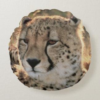 Close-up of Cheetahs Round Pillow