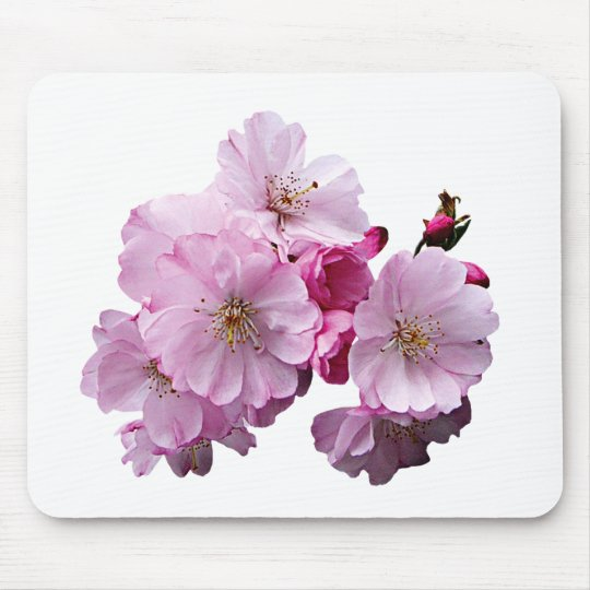 Close Up of Cherry Blossoms Mouse Pad