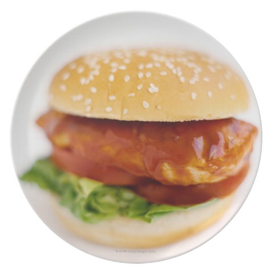 Close-up of chicken burger melamine plate