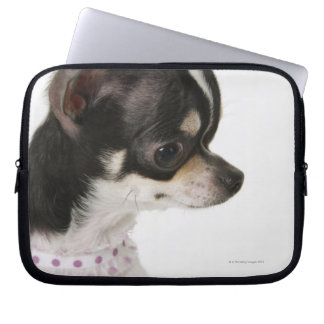 Close-up of Chihuahua, side view Laptop Sleeves