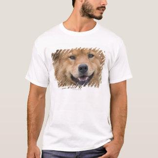 Close up of chow mix dog outdoors. T-Shirt