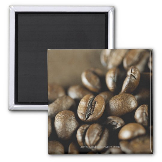 Close-up of coffee beans magnet
