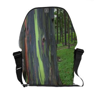 Close-up of colorful eucalyptus tree bark commuter bag