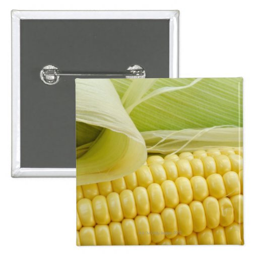 Close up of corn 2 inch square button
