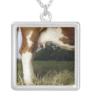 Close up of cow in rural landscape square pendant necklace