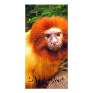 Close-Up of Cute Primate With Orange Fur Custom Photo Card